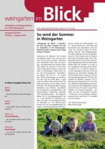 Weingarten_im_Blick_vom_07